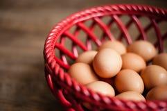 bruna ägg för korg Royaltyfri Bild