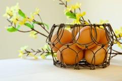 Bruna ägg i en trådkorg Fotografering för Bildbyråer
