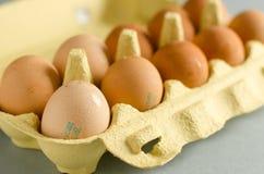12 bruna ägg i gul ägglåda Royaltyfri Fotografi