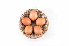 Bruna ägg i korgen på vit royaltyfri foto