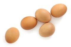 Bruna ägg som isoleras på den vita över huvudet sikten Royaltyfri Fotografi