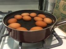Bruna ägg som kokar på ugnöverkant Royaltyfri Foto