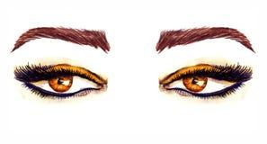 Bruna östliga mandel-formade ögon med makeup, guld- bruna ögonskuggor, svart översikt, mascara, bruna ögonbryn royaltyfri illustrationer