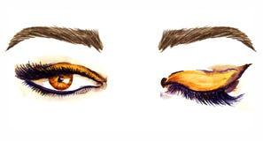 Bruna östliga mandel-formade ögon med stängda och öppna guld- bruna ögonskuggor för makeup, svart översikt, mascara, bruna ögonbr vektor illustrationer