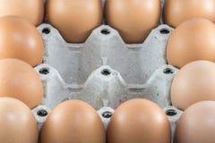 Bruna fega ägg i ask för pappers- låda royaltyfri foto