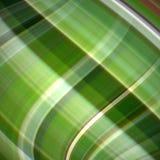 bruna gröna oklara signaler för bakgrund Royaltyfri Foto