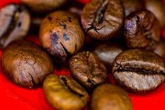 Bruna grillade kaffeb?nor p? r?d bakgrund, slut upp, makro royaltyfri bild