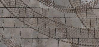 Bruna gummihjulfläckar på grå färgasfalt som bildar cirkeln, formar royaltyfri foto