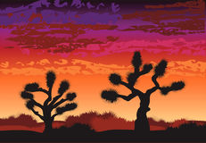 bruna joshua trees vektor illustrationer