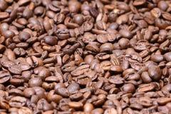Bruna kaffebönor för bakgrund och textur Royaltyfri Fotografi