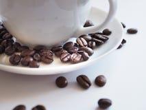 Bruna kaffebönor i en vit kopp Royaltyfri Fotografi