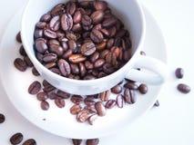 Bruna kaffebönor i en vit kopp Royaltyfria Bilder