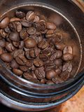Bruna kaffebönor i kaffekvarnen arkivbilder