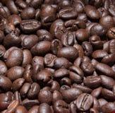 Bruna kaffebönor, närbild av kaffebönor för bakgrund Royaltyfria Bilder
