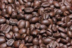 Bruna kaffebönor, närbild av kaffebönor för bakgrund Royaltyfri Fotografi