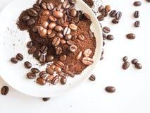 Bruna kaffebönor och jordkaffe på en vit kopp Royaltyfri Fotografi