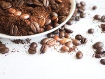 Bruna kaffebönor och jordkaffe på en vit kopp Royaltyfri Bild