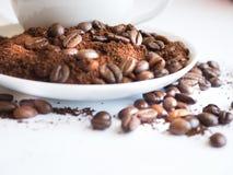 Bruna kaffebönor och jordkaffe på en vit kopp Royaltyfria Foton