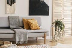 Bruna kuddar och grå filt på soffan i vardagsrum royaltyfria bilder