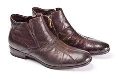 bruna male skor Arkivbild