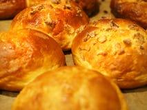 Bruna muffin utan socker bakade i ugnen Royaltyfri Fotografi