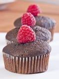 bruna muffiner Arkivfoton