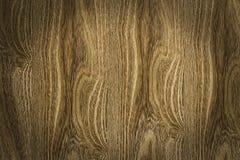 bruna naturliga modeller texture trä Royaltyfri Foto