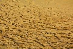 Bruna sand- och vindspår, bakgrund Arkivbilder