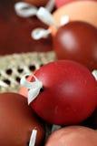 bruna skal för easter äggred Arkivfoton
