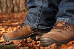 bruna skor Arkivbilder