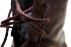 Bruna skosnöre fotografering för bildbyråer