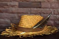 Bruna Straw Hat royaltyfri bild