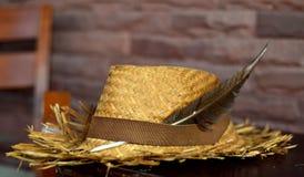 Bruna Straw Hat royaltyfria foton