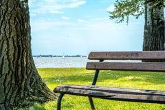 Bruna trä parkerar bänken Royaltyfri Bild