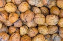 Bruna valnötter som bakgrund Fotografering för Bildbyråer