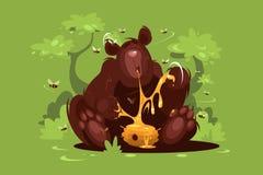 Brunbjörnen äter söt honung Royaltyfri Bild