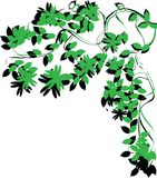 brunch δέντρο φυλλώματος Στοκ Εικόνες