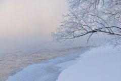 Brunch boven sneeuwrivieroever Stock Afbeelding