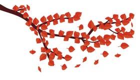 Brunch con i fogli di autunno Fotografie Stock