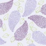 Brunch de la flor de la lila Fotos de archivo libres de regalías