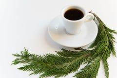Brunch de tasse et de pin de café sur le fond blanc avec l'espace pour le texte Concept de temps de café de Minnimal Photographie stock