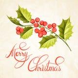 Brunch del vischio di Natale Immagini Stock