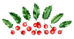 Brunch e foglie di Holly Berry Immagini Stock