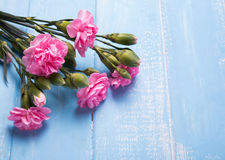 Brunch of lovely pink flowers Royalty Free Stock Photography