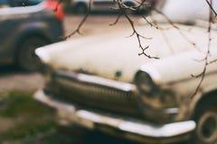 Brunch tôt sans feuilles minuscule de ressort sur le vieux fond de voiture de cru photo stock