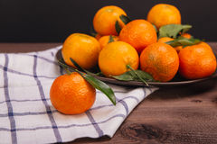 Brunch of tangerines Stock Image