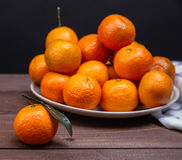 Brunch of tangerines Royalty Free Stock Images