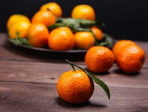Brunch of tangerines Royalty Free Stock Photos