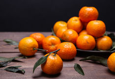 Brunch of tangerines Stock Photography