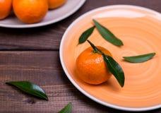 Brunch of tangerines Stock Images